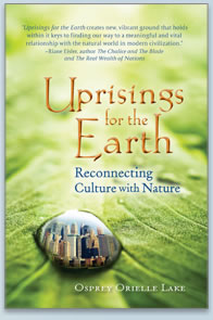 Uprisings for the Earth Book